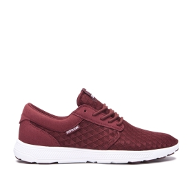 Supra Mens HAMMER RUN Andora/white Trainers | CA-26569